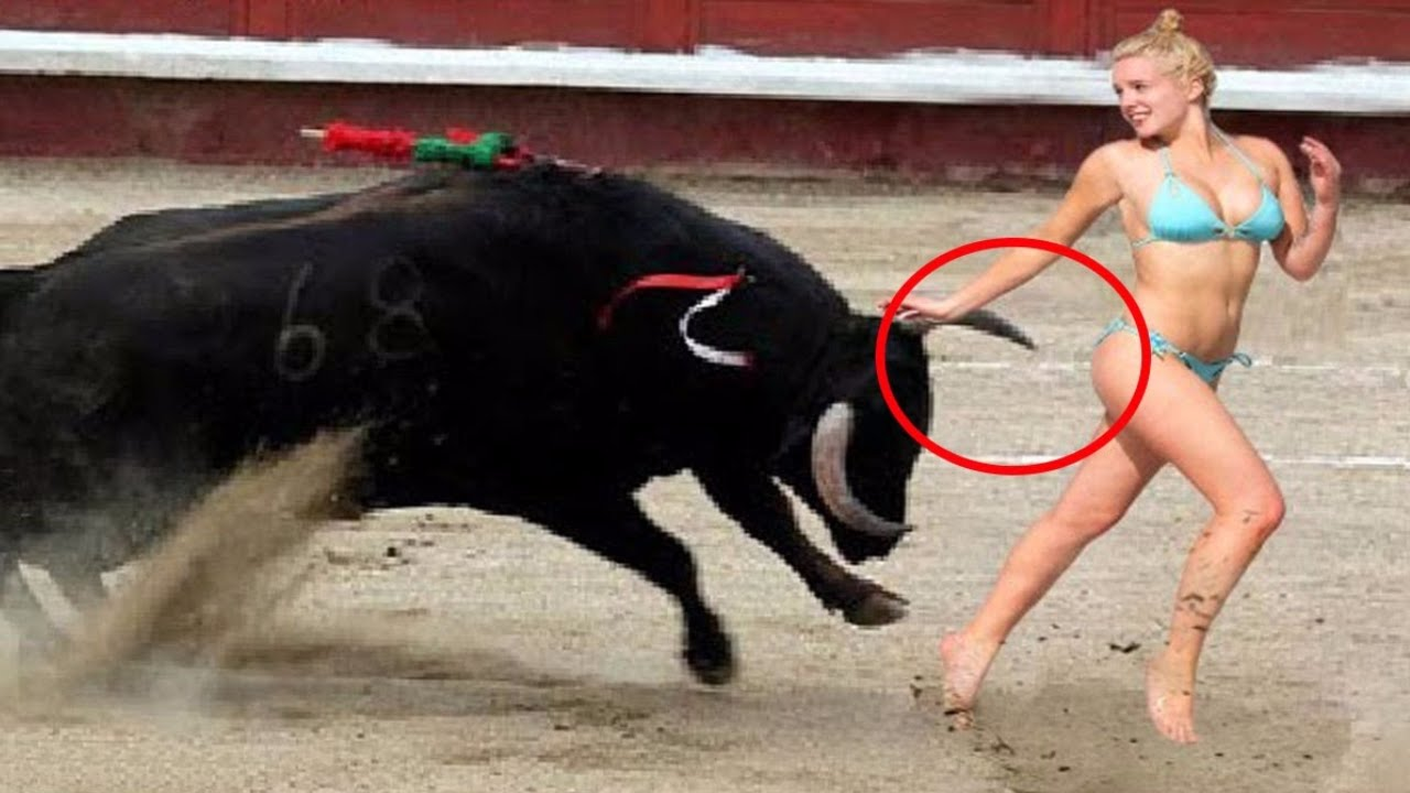 Funny Bullfighting Scenes